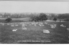 Parliament Hill Fields with-Sheep July 1922