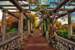 The Pergola, the Hill Garden and Golder